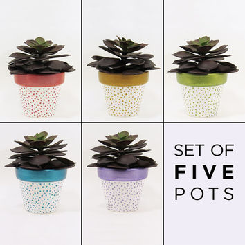 Planter Set, Terracotta Pots, Succulent Planter, Flower Pot, Air Plant Holder, Plant Pot, Succulent Pot, Indoor Planter, Colorful - Set of 5