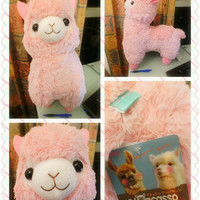 READY TO SHIP Arpakasso Alpacasso natural macaron color Jumbo Big Plush toy 55cm