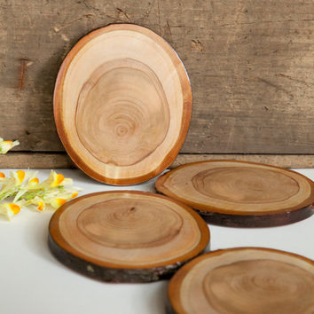 Large Set of 4 Rustic Wood Slice Coasters. Foraged wood coasters.