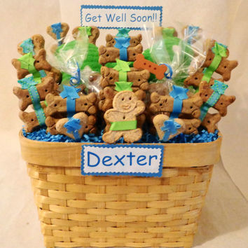 Get Well Dog biscuit treat dog gift basket with squeak  toy,  unique gift, personalized, lime green, turquoise