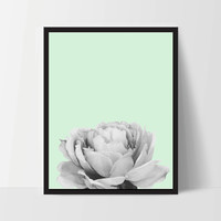 Mint Peony Flower, Wall Art, Artwork, Home Decor, Modern Print