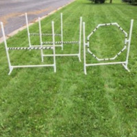 Dog Agility Jumper Starter Set: Includes 3 Jumps and 1 Hoop/Tire Jump