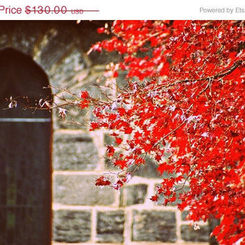SALE NOW Ends 12/06 A Streak of Red 20x30 Photography by thebqe