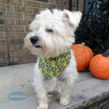 Spooky Spots and Spirals Halloween Dog Bandana, Medium, Reversible Collar Slipcover