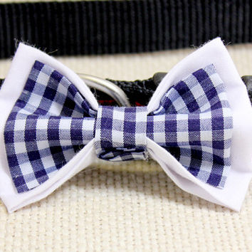 Medium Size White and Blue Gingham Dog Bowtie. White Cotton and Blue Check Puppy Accent Bow Tie. Double Tie for Dog Collar.