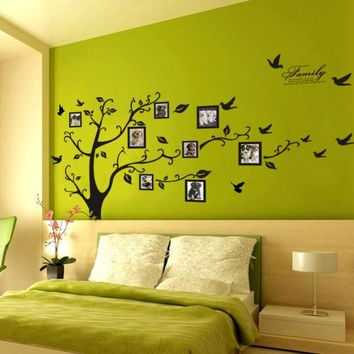 Family Picture Tree Wall Quote Decals