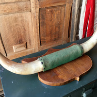 Vintage Steer Horns, Bulls Horns, Mounted Cow Horns, Western Wall Decor, Vintage Real Taxidermy