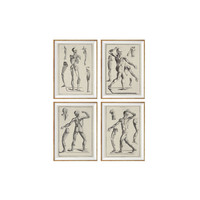 Set of 4 Prints Human Anatomy Antique, Vintage Anatomy, brown neutral, Office decor, Medical student, Dorm room, Gift Idea Picture Set *47*