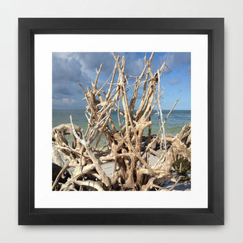 Driftwood Sculpture Cayo Costa Framed Art Print by Rosie Brown