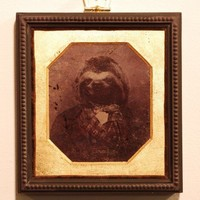 Sloth Animal Portrait | AGQuinn - Print on ArtFire