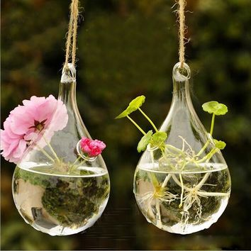 Clear Glass Hanging Vase Bottle Terrarium Flower pot