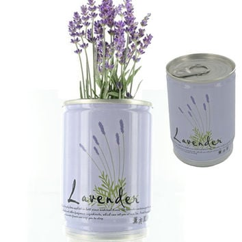Lavender In A Can