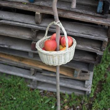 Round Grey Willow Basket With Cane