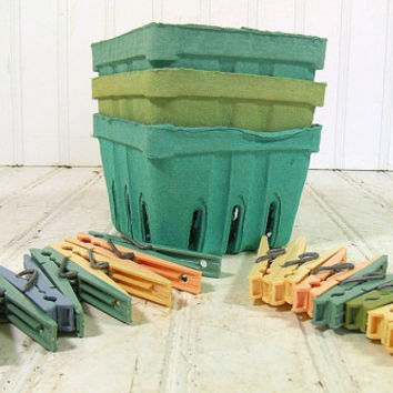Vintage Set of Pastel Plastic Clothes Pins & BeriGard Berry Baskets - Farm House Fresh Finds for Storage - Rustic Colorful Organizer Bins