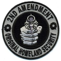 """Embroidered Iron On Patch - 2nd Amendment Original Homeland Security 3"""" Patch"""