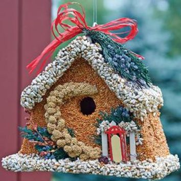 Edible Birdhouses