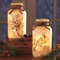 Frosted Glass Mason Jar Lights