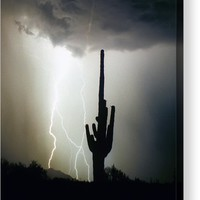 Intertwine Lightning Bolts And Saguaro Acrylic Print