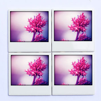 Pink  Coasters, Tropical Flowers - Set of 4 Polaroid Style Drink Coasters