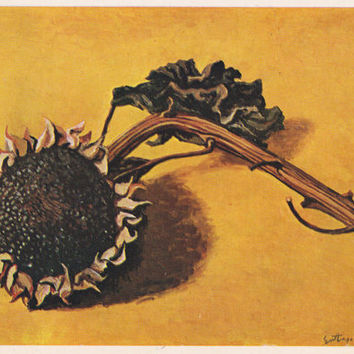Sunflowers. Collection / Set of 6 Vintage Prints, Postcards in original cover -- 1960s-1980s