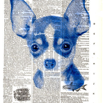 Chihuahua Dog - Blue - Vintage Dictionary Art Print - Page Size 8.5x11