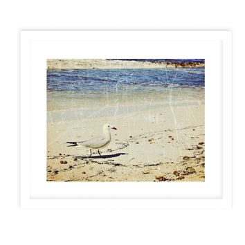 BEACH BIRD VINTAGE Framed Giclee Print With Mat By Jolina Anthony