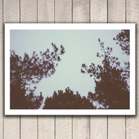 Fine art photography, wall art, wall decor, photo print, nature, trees, forest, camping, hipster photography, hiking, film photography