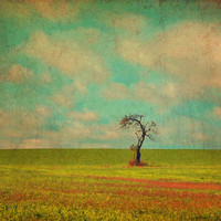Lonesome Tree in Lime and Orange Field and Aqua and White Sky - Fine Art Photo Painting - Square