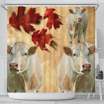 Charolais Cattle (Cow) Print Shower Curtain-Free Shipping