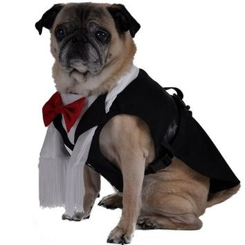 Dog Black Tie Tuxedo Outfit