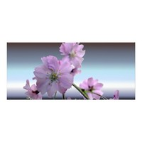 Pink Flowering Cherry Blossoms Rack Card