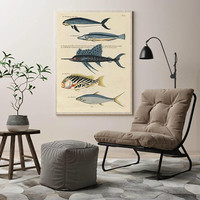 Fish Poster| Sea Life Art| Taxonomy Wall Art| Fishes Wall Art| Fishes Print| Animal Poster| Natural History| Vintage Zoology| HAP005