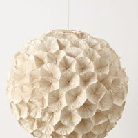 Rhododendron Chandelier by Anthropologie in Assorted Size: One Size Lighting