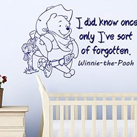 Wall Decals Quotes Vinyl Sticker Decal Quote Winnie the Pooh I did know once only I've sort of forgotten Nursery Baby Room Kids Boys Girls Home Decor Bedroom Art Design Interior C36