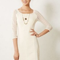 Laced Frost Dress by Bordeaux Ivory
