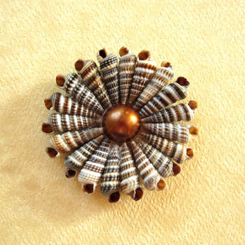 Shell and Pearl Flower Hair Accessory or Pin - One of a Kind Seashell Accessory