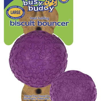 Busy Buddy Biscuit Bouncer