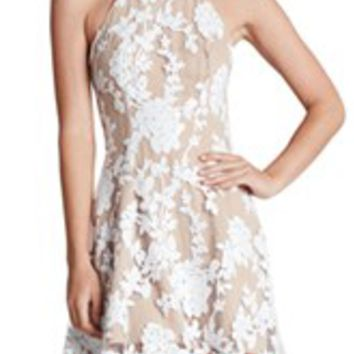 Dress the Population Embroidered Lace Fit & Flare Dress | Nordstrom