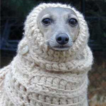PDF Crochet Pattern for Dog Snood