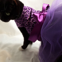 CoolCats Purple and Black Leopard Tutu Dress for Cats