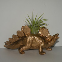 All items - Buy 3 get 1 free. Stegosaurus dinosaur planter in gold with air plant. Perfect gift for him.