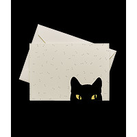 Cat Eye Stationery