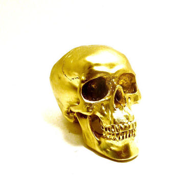 gold skull head, metallic gold decor, spooky, skulls, eclectic home decor, unusual, creepy, anatomy, heads