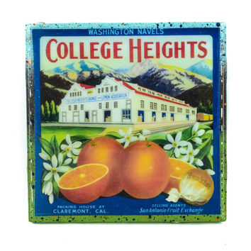 College Heights Oranges Brand - Vintage Citrus Crate Label - Handmade Recycled Tile Coaster