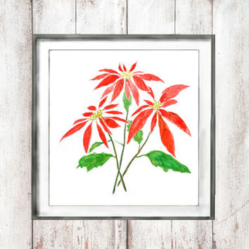 Vintage Botanical Watercolor Print  Red Poinsettia watercolor painting floral arts wall decor home decor watercolor art digital printable