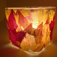 Glass Candleholder - Fall Decor -  Fall Wedding - Glass Centerpiece - Wedding Centerpiece - Autumn Decor - Autumn Centerpiece