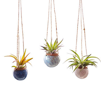 Set of Three Small Hanging Planters MADE TO ORDER.  Planters for Airplants in Oasis, Opal, and White