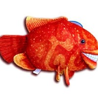 Novelty Animal Shaped Throw Pillows Red Cichlid