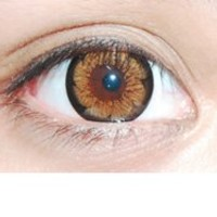 Royal Vision Girly Chip Latte Brown Circle Lenses Colored Contacts Cosmetic Color Circle Lens   EyeCandy's