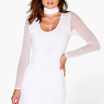 Diana Mesh Sleeve Midi Dress